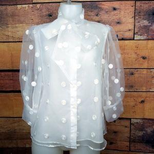 Zara sheer polka dot balloon 3/4 sleeve blouse
